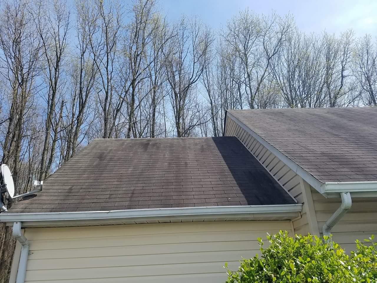 Roof Cleaning Algae Mildew Black Streak Removal